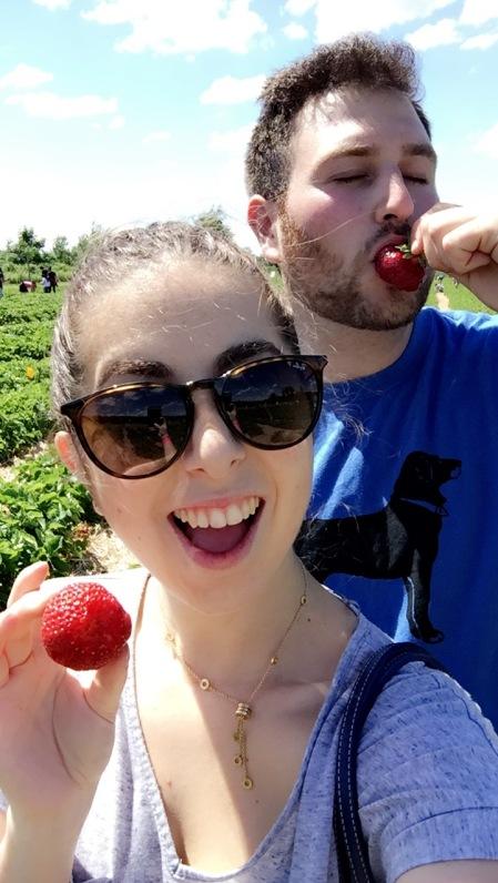 artfoodadventure-strawberries